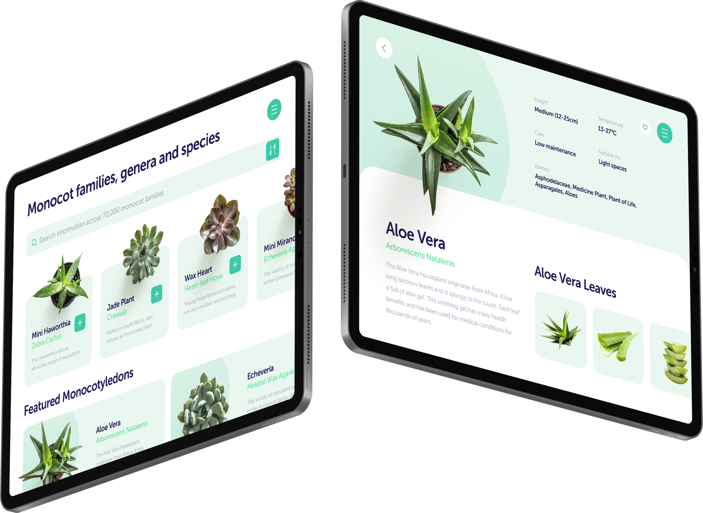 Two iPads showing a plant website