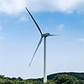 Ovo Energy wind farm
